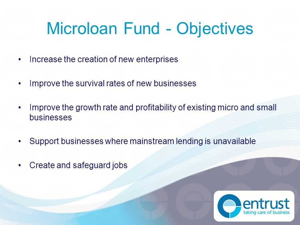 Microloan Fund - Objectives Increase the creation of new enterprises Improve the survival rates of new businesses Improve the growth rate and profitab