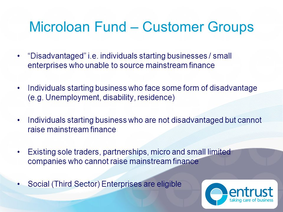 Microloan Fund – Key Figures Loan capital £5m (£1.225m per year) Lending periodTo December 2014 Number of Loans 500+ Output targets –New businesses 300+ –Existing businesses supported200+ –Jobs created and safeguarded1,100+
