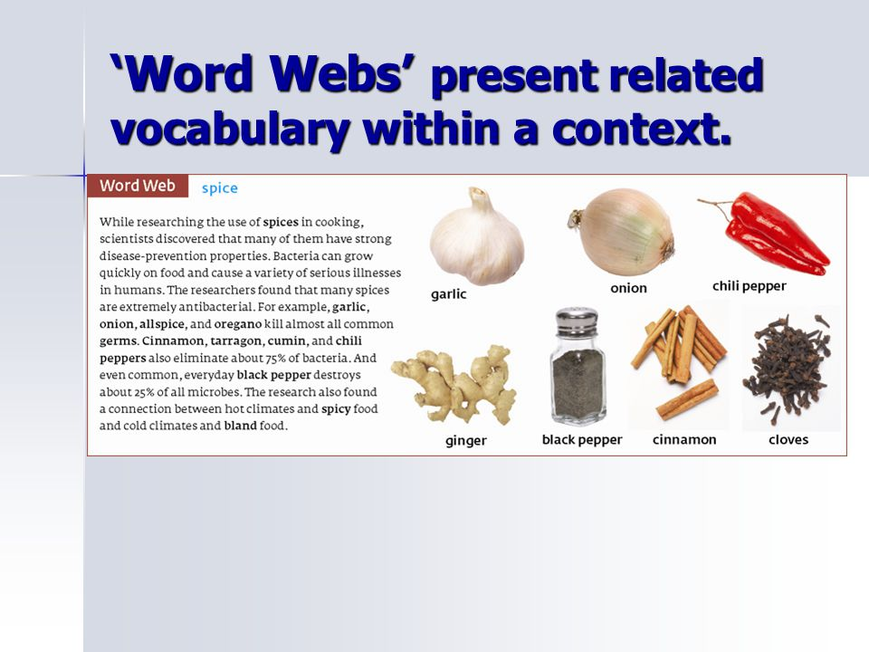 'Word Webs' present related vocabulary within a context.