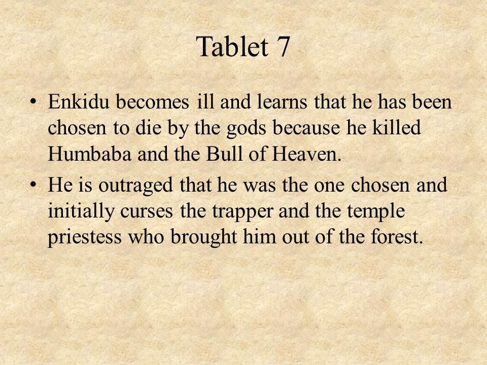 Tablet 7 Enkidu becomes ill and learns that he has been chosen to die by the gods because he killed Humbaba and the Bull of Heaven. He is outraged tha
