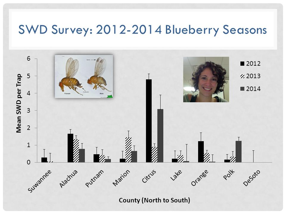SWD Survey: 2012-2014 Blueberry Seasons