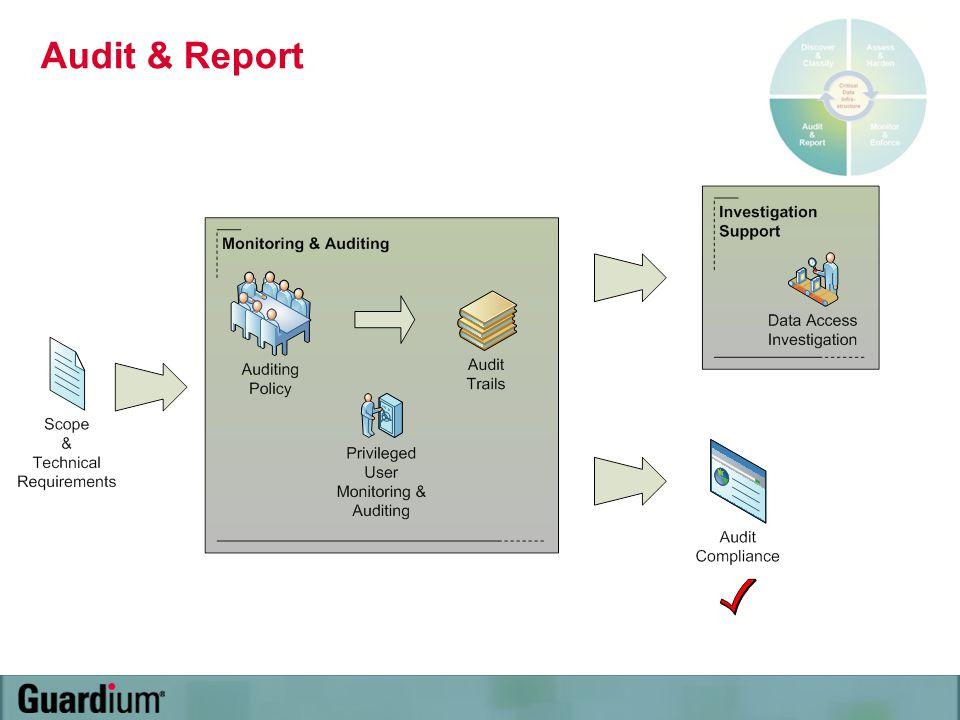 Audit & Report