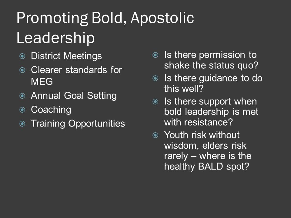 Promoting Bold, Apostolic Leadership  District Meetings  Clearer standards for MEG  Annual Goal Setting  Coaching  Training Opportunities  Is there permission to shake the status quo.