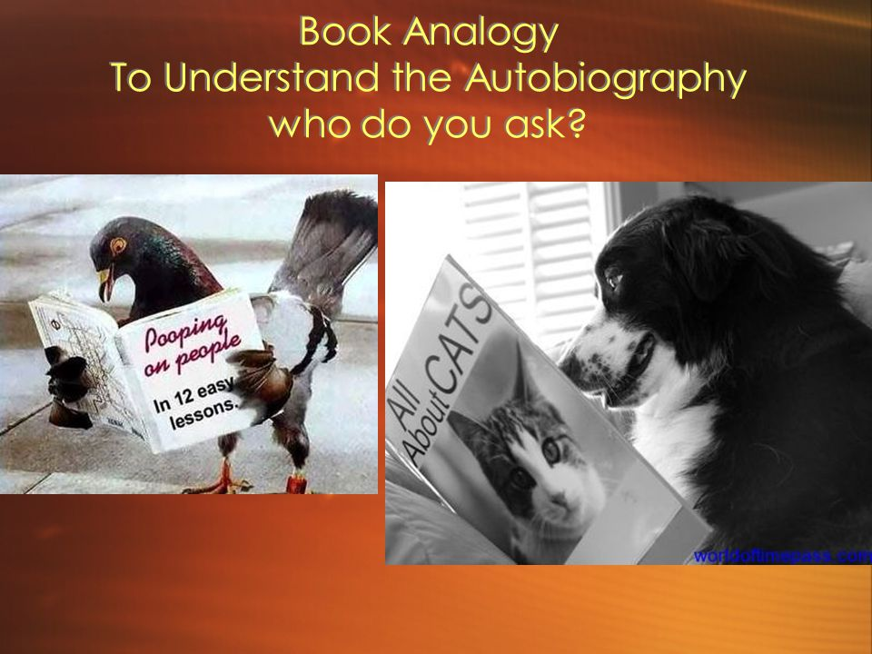 Book Analogy To Understand the Autobiography who do you ask?