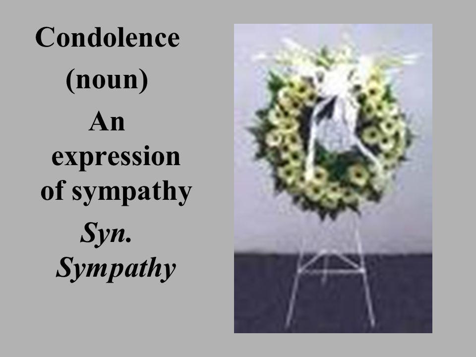 Condolence (noun) An expression of sympathy Syn. Sympathy