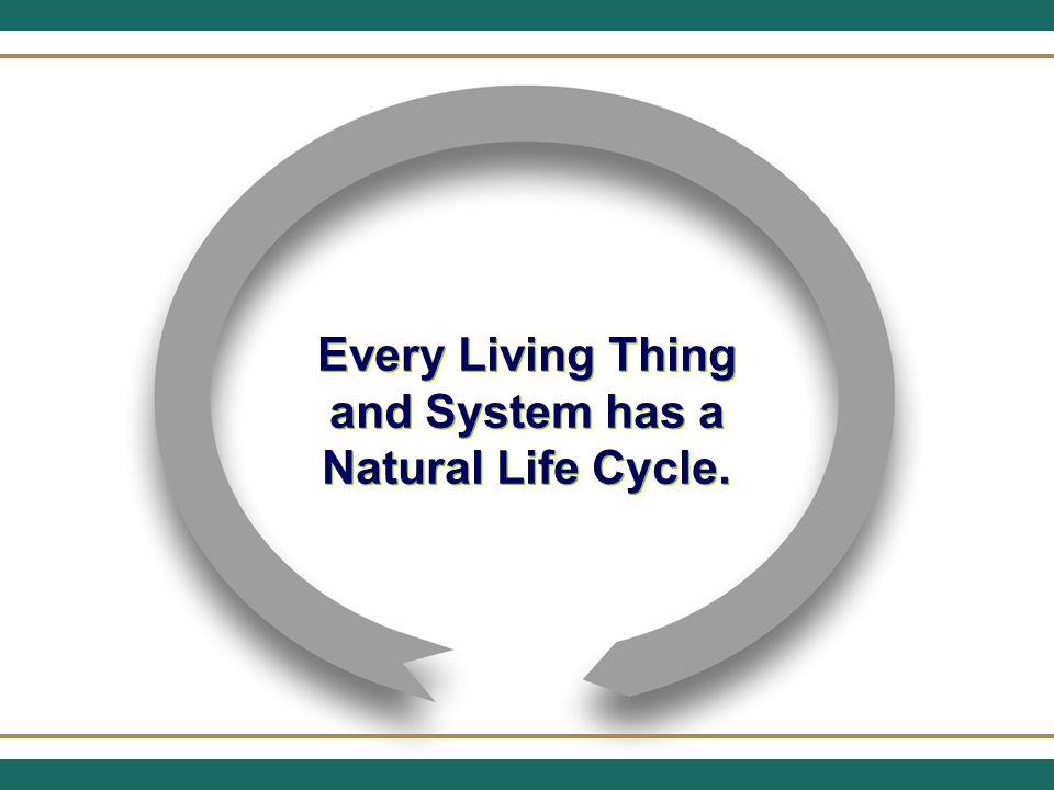 BIRTH GROWTH STABILITY REDEFINITION DECLINE One of Two Things Follows Stability Redefinition of the Ministry –Leads to a new growth cycle Decline