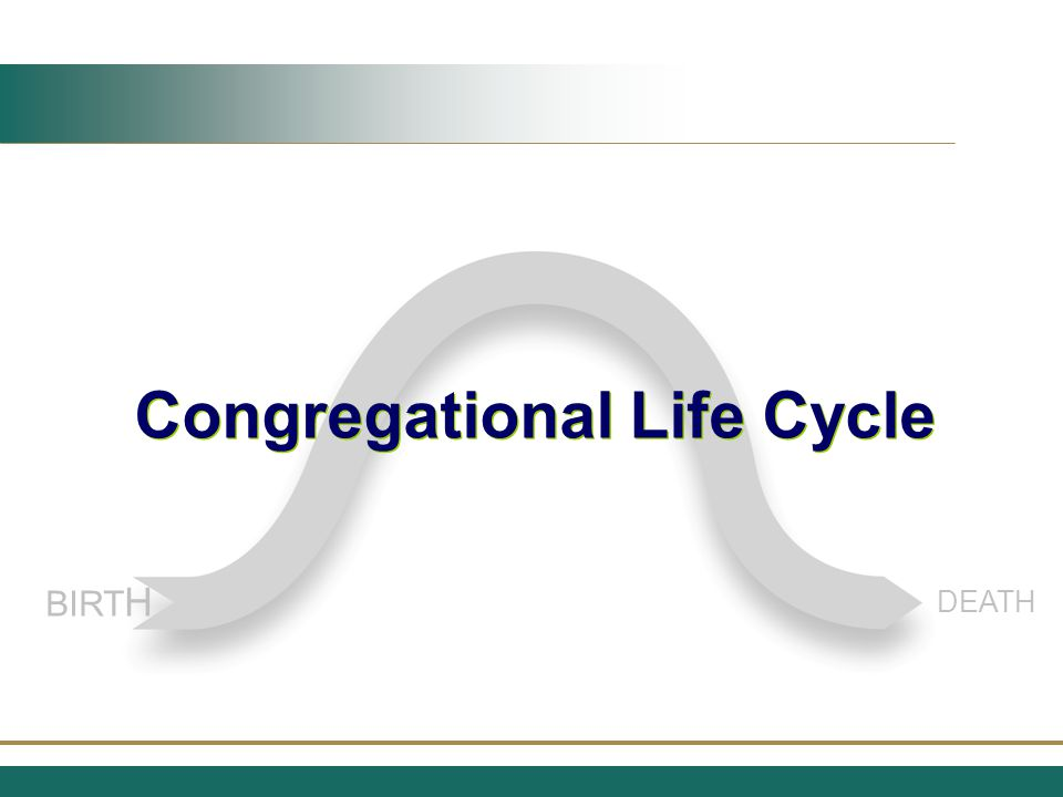 Potential The Cycle Begins at Birth Purpose and Vision (assumed or stated) — DNA Constant Care/Protection BIRTH