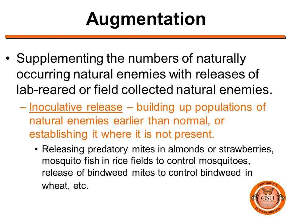 Augmentation Supplementing the numbers of naturally occurring natural enemies with releases of lab-reared or field collected natural enemies.