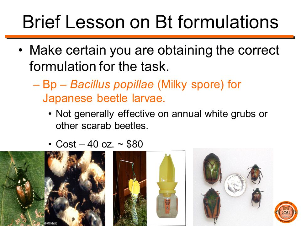 Brief Lesson on Bt formulations Make certain you are obtaining the correct formulation for the task.