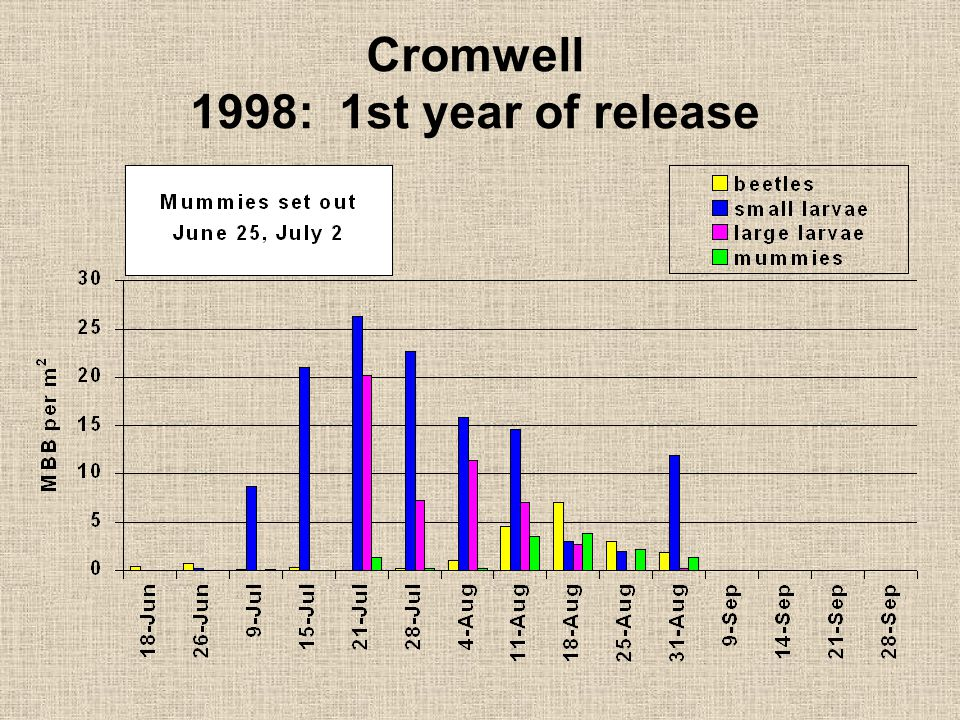 Cromwell 1998: 1st year of release