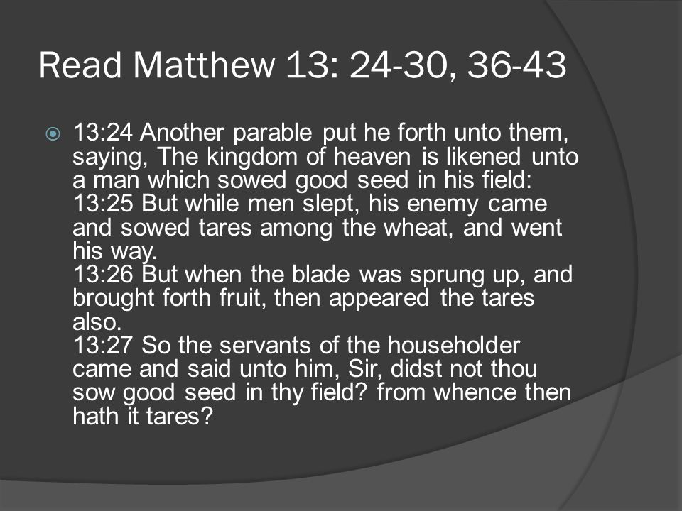 Read Matthew 13: 24-30, 36-43  13:28 He said unto them, An enemy hath done this.