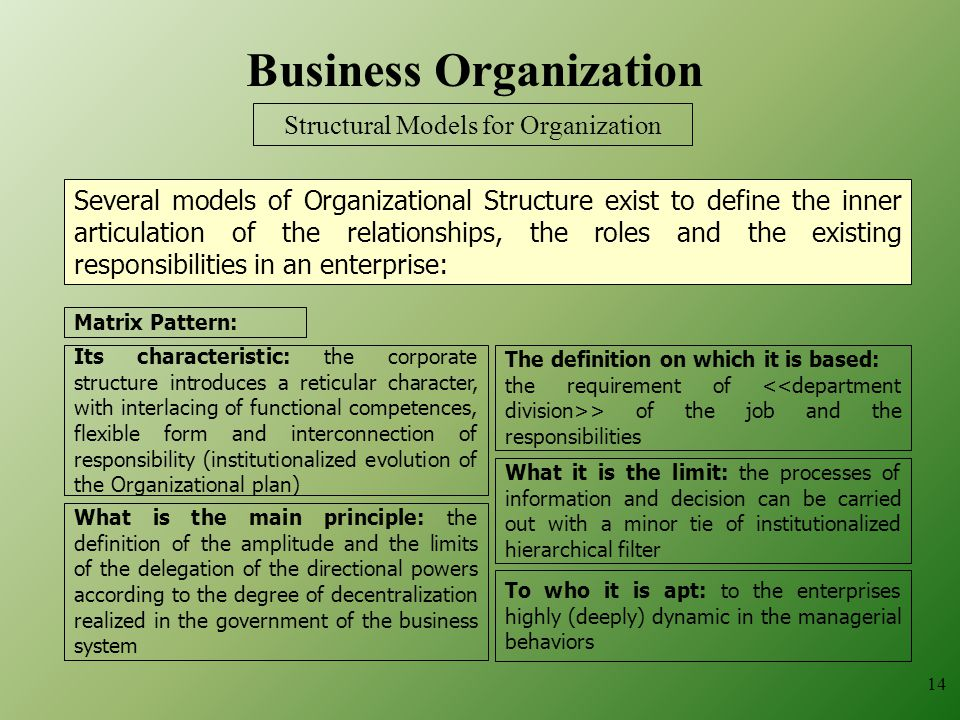 14 Business Organization What is the main principle: the definition of the amplitude and the limits of the delegation of the directional powers according to the degree of decentralization realized in the government of the business system The definition on which it is based: the requirement of > of the job and the responsibilities To who it is apt: to the enterprises highly (deeply) dynamic in the managerial behaviors What it is the limit: the processes of information and decision can be carried out with a minor tie of institutionalized hierarchical filter Matrix Pattern: Its characteristic: the corporate structure introduces a reticular character, with interlacing of functional competences, flexible form and interconnection of responsibility (institutionalized evolution of the Organizational plan) Structural Models for Organization Several models of Organizational Structure exist to define the inner articulation of the relationships, the roles and the existing responsibilities in an enterprise:
