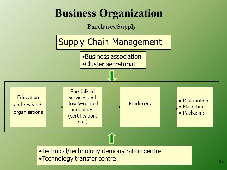 36 Business association Cluster secretariat Education and research organisations Distribution Marketing Packaging Technical/technology demonstration centre Technology transfer centre Specialised services and closely-related industries (certification, etc.) Producers Supply Chain Management Business Organization Purchases/Supply