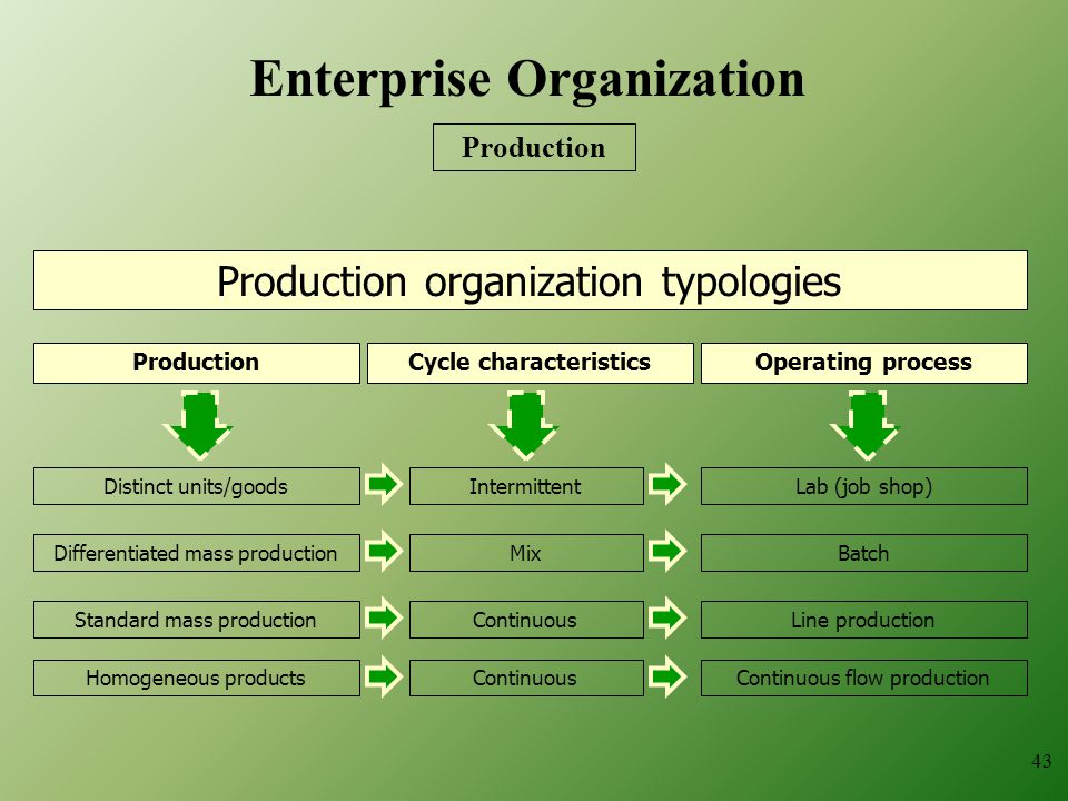 Production organization typologies Distinct units/goods ProductionOperating processCycle characteristics Differentiated mass production Standard mass production Homogeneous products Intermittent Mix Continuous Lab (job shop) Batch Line production Continuous flow production 43 Enterprise Organization Production