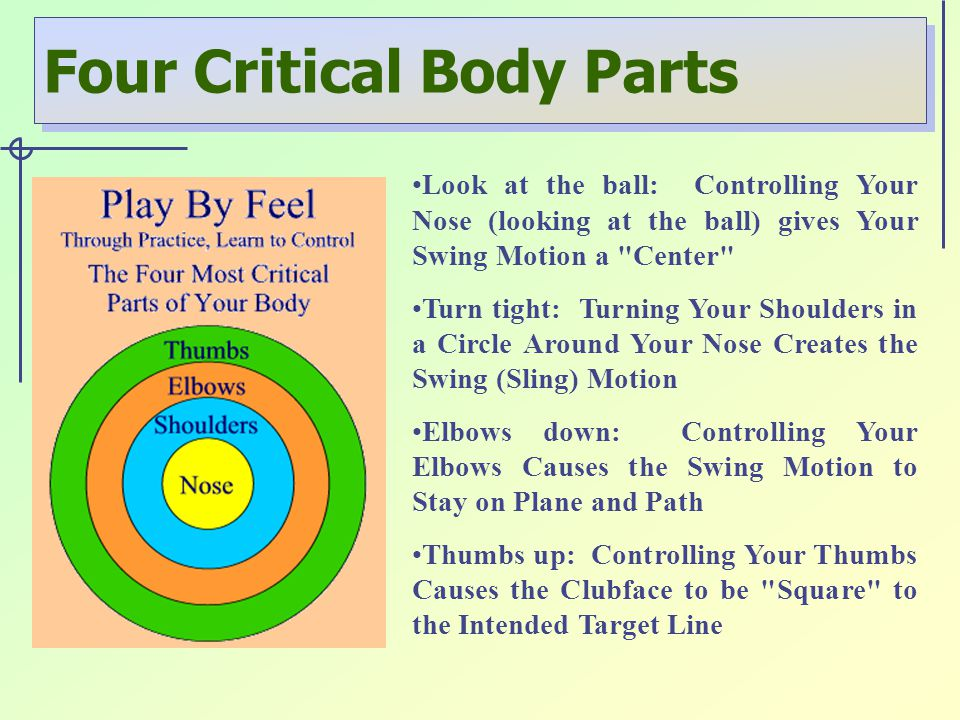Four Critical Body Parts Look at the ball: Controlling Your Nose (looking at the ball) gives Your Swing Motion a Center Turn tight: Turning Your Shoulders in a Circle Around Your Nose Creates the Swing (Sling) Motion Elbows down: Controlling Your Elbows Causes the Swing Motion to Stay on Plane and Path Thumbs up: Controlling Your Thumbs Causes the Clubface to be Square to the Intended Target Line
