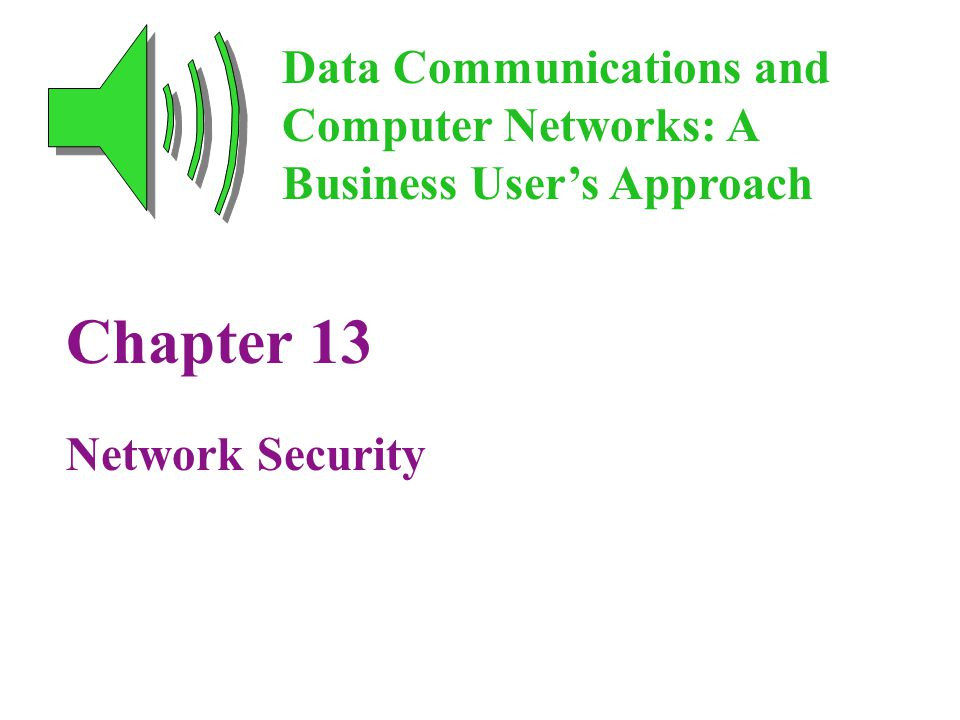 Chapter 13 Network Security Data Communications and Computer Networks: A Business User's Approach