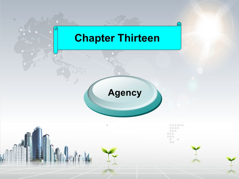 Chapter Thirteen Agency