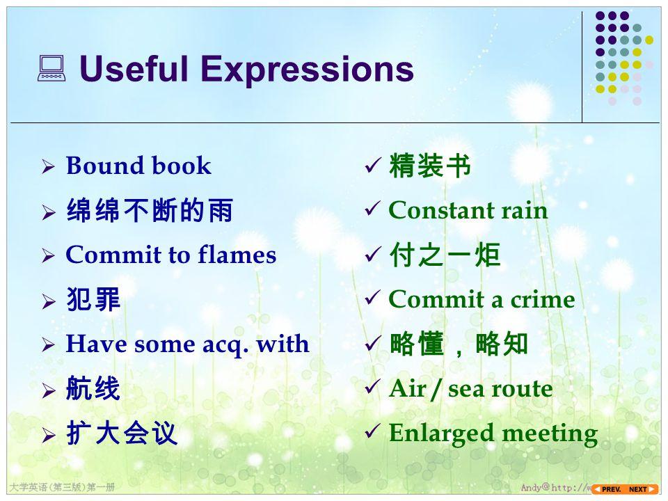  Useful Expressions  Bound book 精装书  扩大会议  绵绵不断的雨  Commit to flames  犯罪  Have some acq.