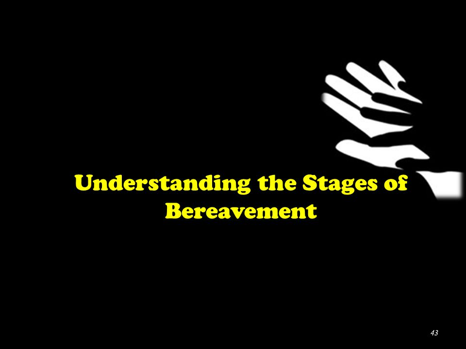 Understanding the Stages of Bereavement 43