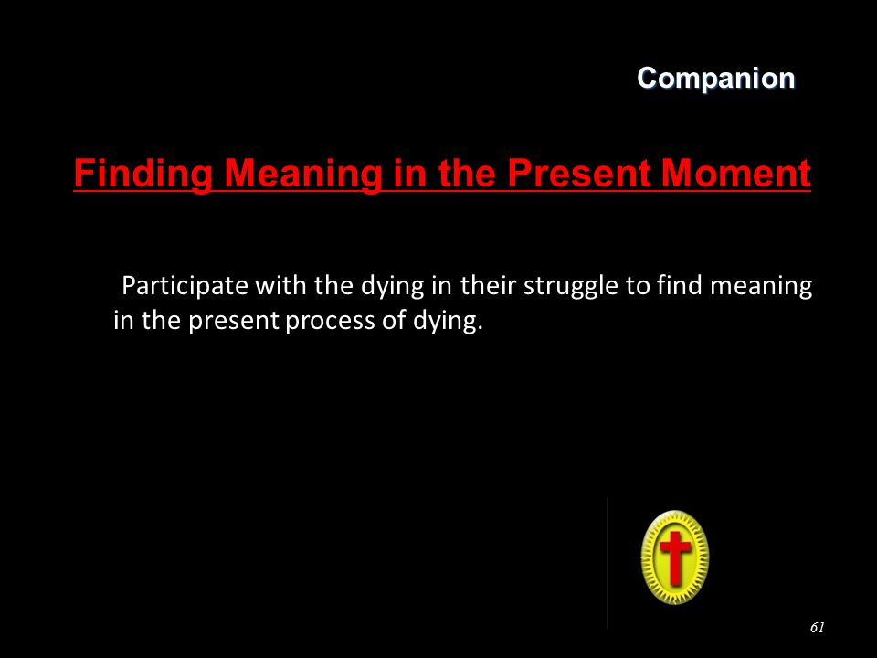 Companion Finding Meaning in the Present Moment Participate with the dying in their struggle to find meaning in the present process of dying.