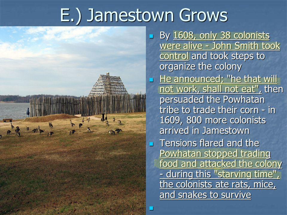 E.) Jamestown Grows By 1608, only 38 colonists were alive - John Smith took control and took steps to organize the colony By 1608, only 38 colonists w