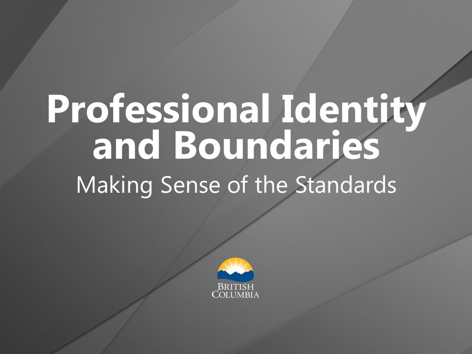 Professional Identity and Boundaries Making Sense of the Standards