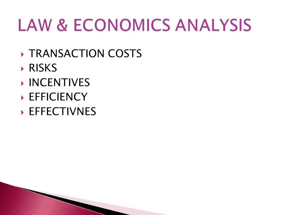  TRANSACTION COSTS  RISKS  INCENTIVES  EFFICIENCY  EFFECTIVNES