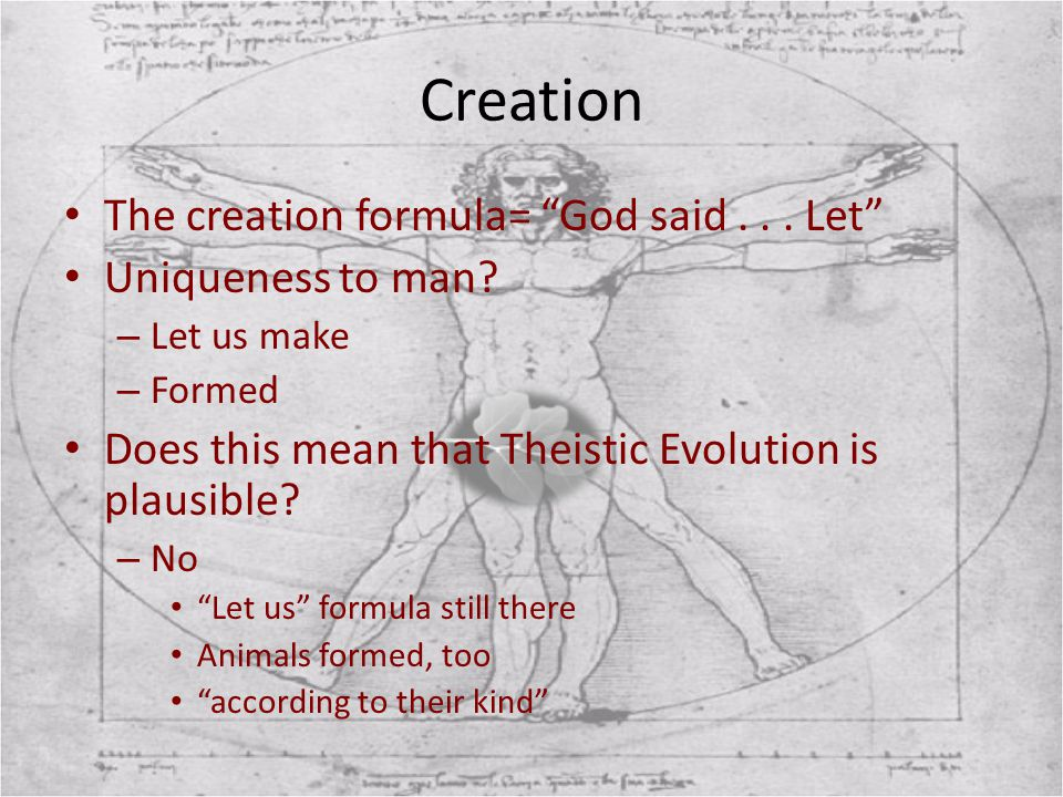 """Creation The creation formula= """"God said... Let"""" Uniqueness to man? – Let us make – Formed Does this mean that Theistic Evolution is plausible? – No """""""