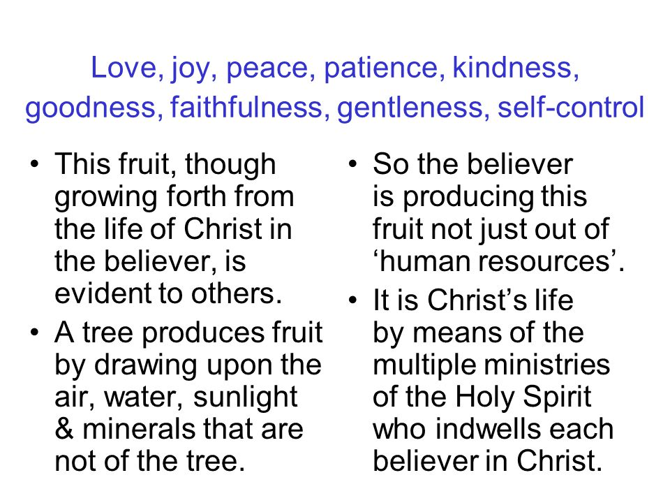 Love, joy, peace, patience, kindness, goodness, faithfulness, gentleness, self-control This fruit, though growing forth from the life of Christ in the believer, is evident to others.