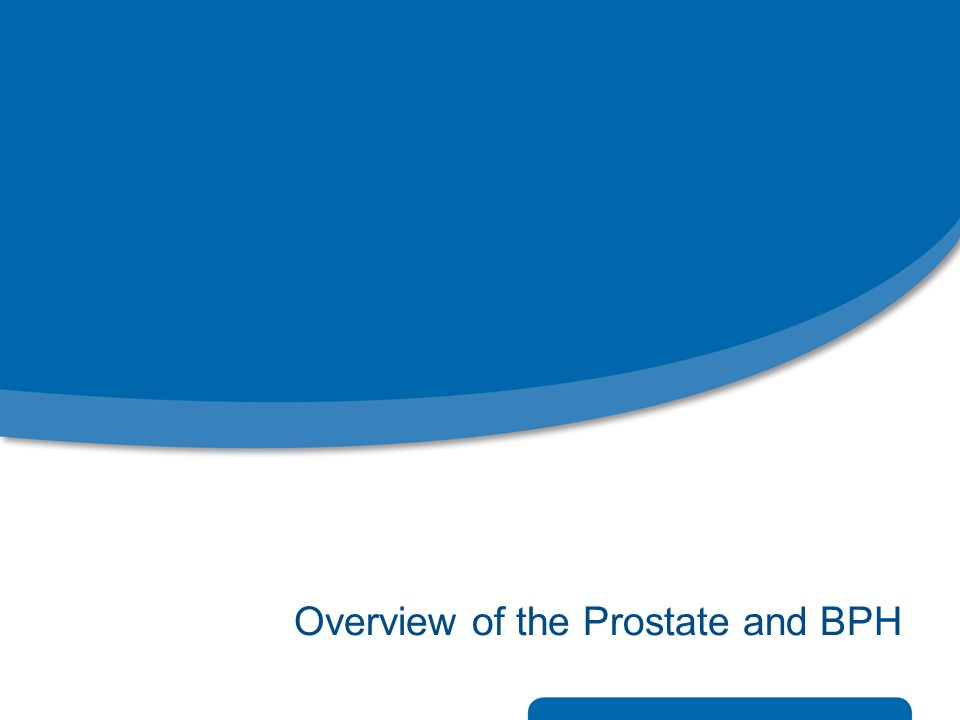 Overview of the Prostate and BPH