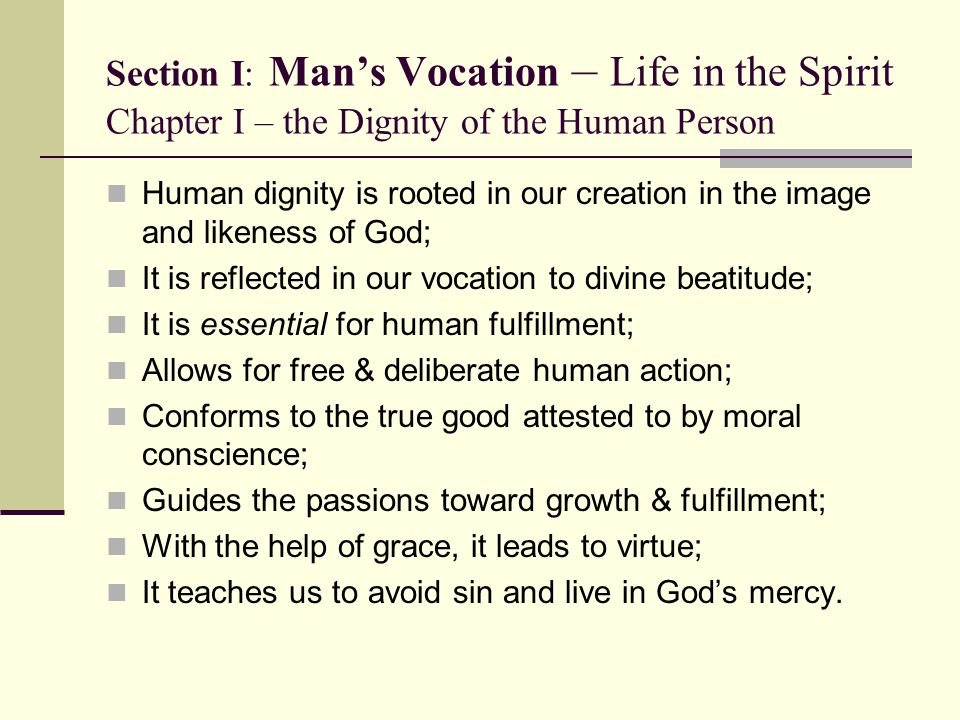 Section I: Man's Vocation – Life in the Spirit Chapter I – the Dignity of the Human Person Human dignity is rooted in our creation in the image and li