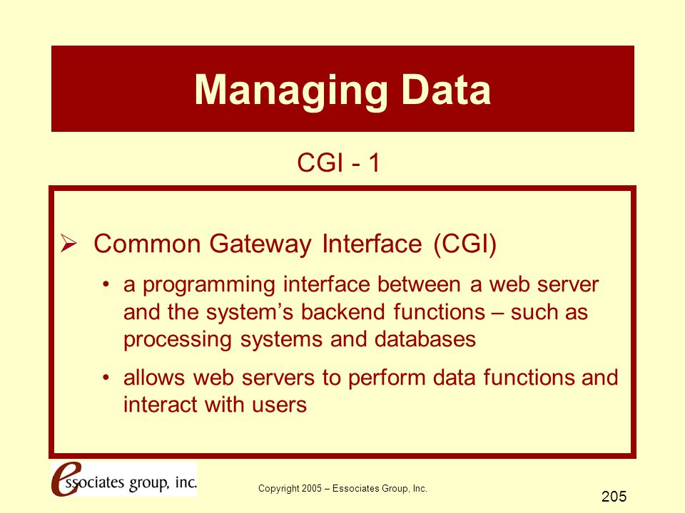 Copyright 2005 – Essociates Group, Inc. 205 Managing Data  Common Gateway Interface (CGI) a programming interface between a web server and the system