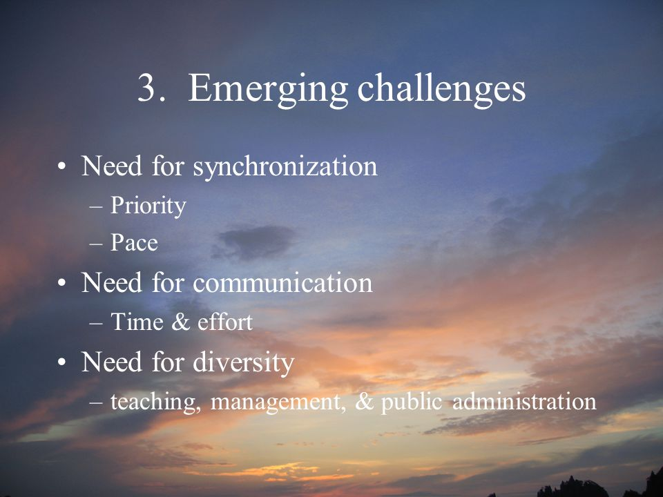 3. Emerging challenges Need for synchronization –Priority –Pace Need for communication –Time & effort Need for diversity –teaching, management, & publ