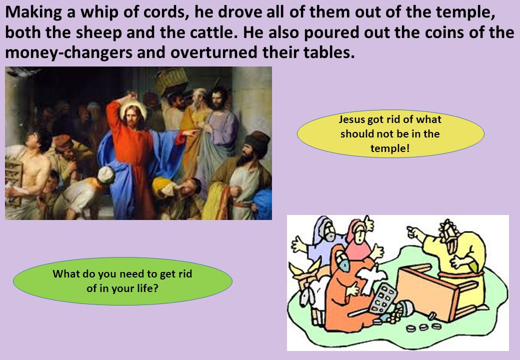 Making a whip of cords, he drove all of them out of the temple, both the sheep and the cattle.