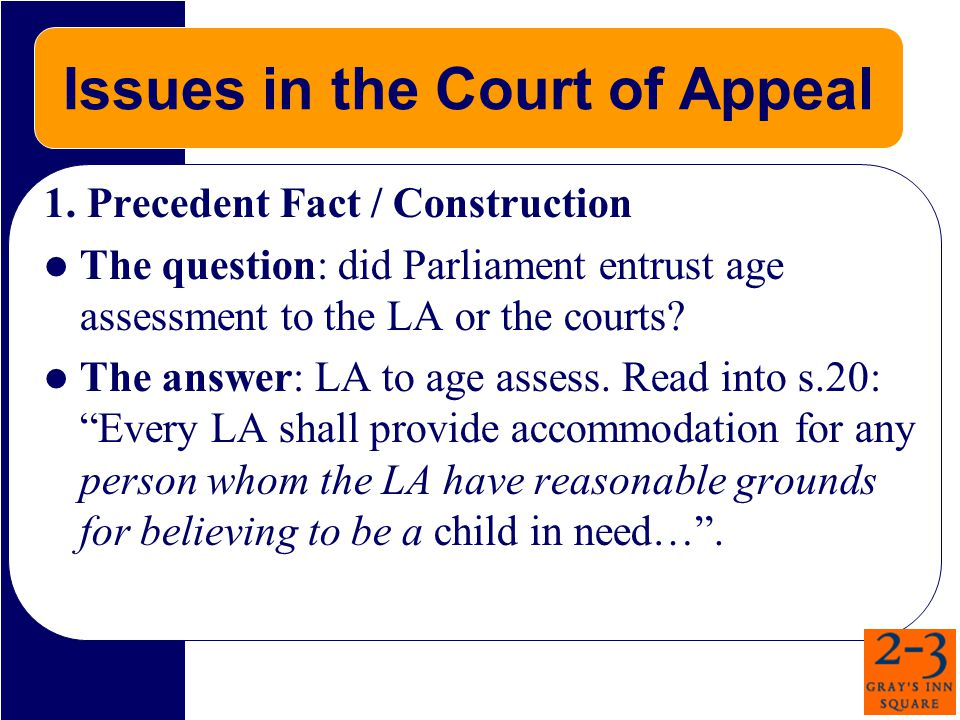 Issues in the Court of Appeal 1.