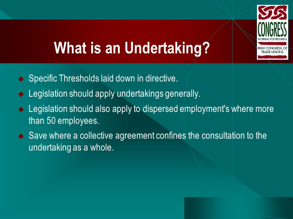 What is an Undertaking?  Specific Thresholds laid down in directive.  Legislation should apply undertakings generally.  Legislation should also app
