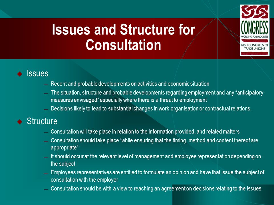 Issues and Structure for Consultation  Issues — Recent and probable developments on activities and economic situation — The situation, structure and