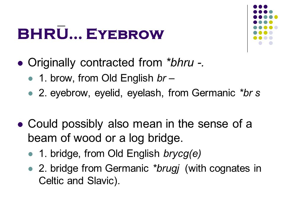 BHRU… Eyebrow Originally contracted from *bhru -. 1.