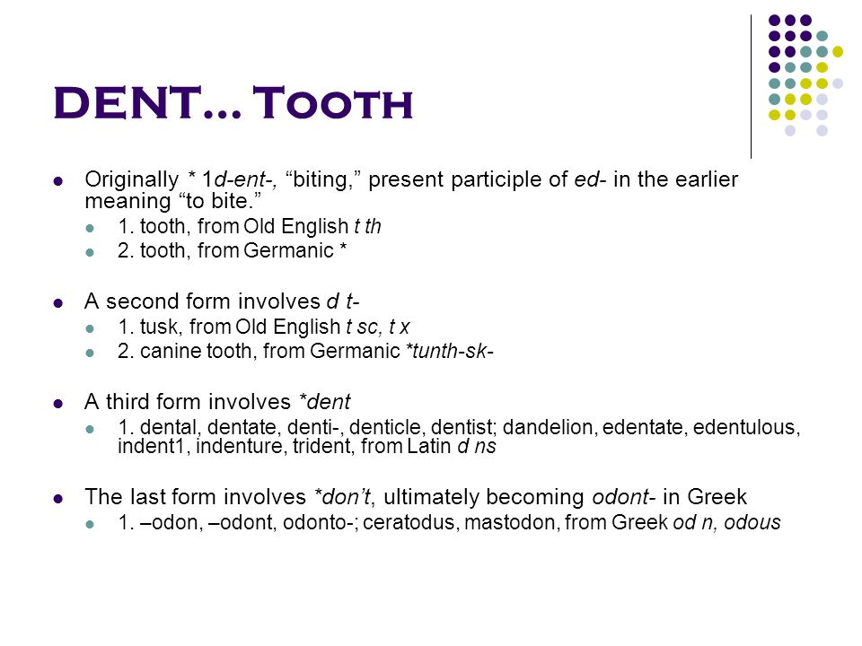 DENT… Tooth Originally * 1d-ent-, biting, present participle of ed- in the earlier meaning to bite. 1.