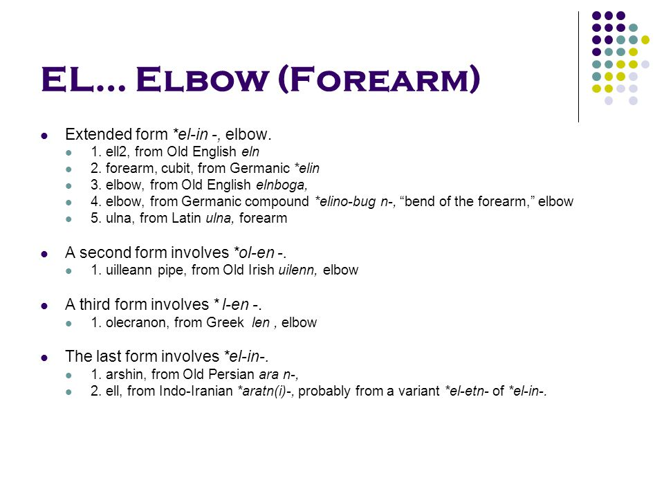 EL… Elbow (Forearm) Extended form *el-in -, elbow. 1. ell2, from Old English eln 2. forearm, cubit, from Germanic *elin 3. elbow, from Old English eln