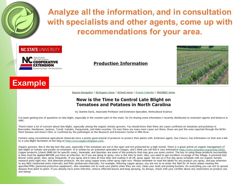 Analyze all the information, and in consultation with specialists and other agents, come up with recommendations for your area. Example