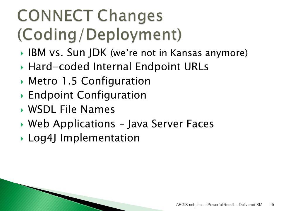  IBM vs. Sun JDK (we're not in Kansas anymore)  Hard-coded Internal Endpoint URLs  Metro 1.5 Configuration  Endpoint Configuration  WSDL File Nam