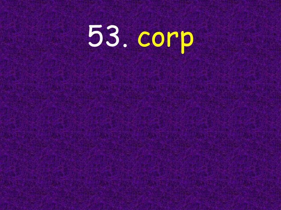 53. corp