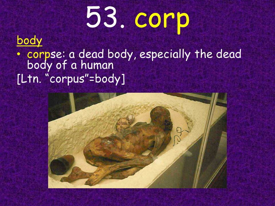 53. corp body corpse: a dead body, especially the dead body of a human [Ltn. corpus =body]