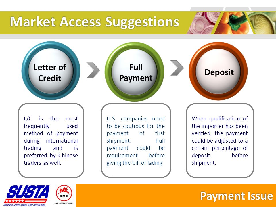 Market Access Suggestions Key Points 1 1 4 4 2.Network Development Entrust a regional (if possible national) agent Allow the agent to develop its own sub-distribution network to avoid price war etc.