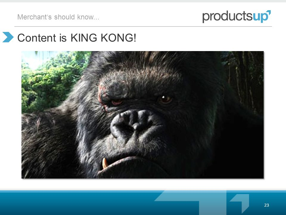 Content is KING KONG! 23 Merchant's should know...