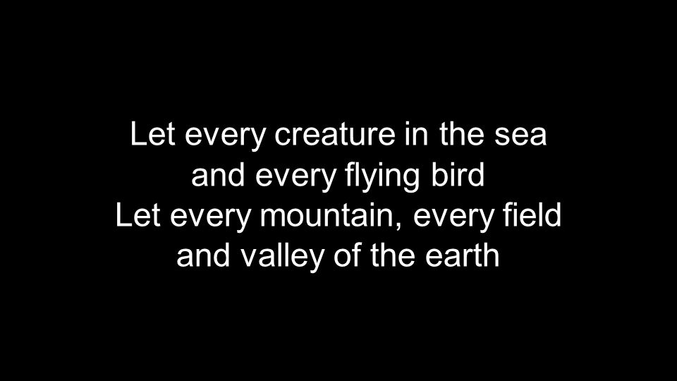 Let every creature in the sea and every flying bird Let every mountain, every field and valley of the earth