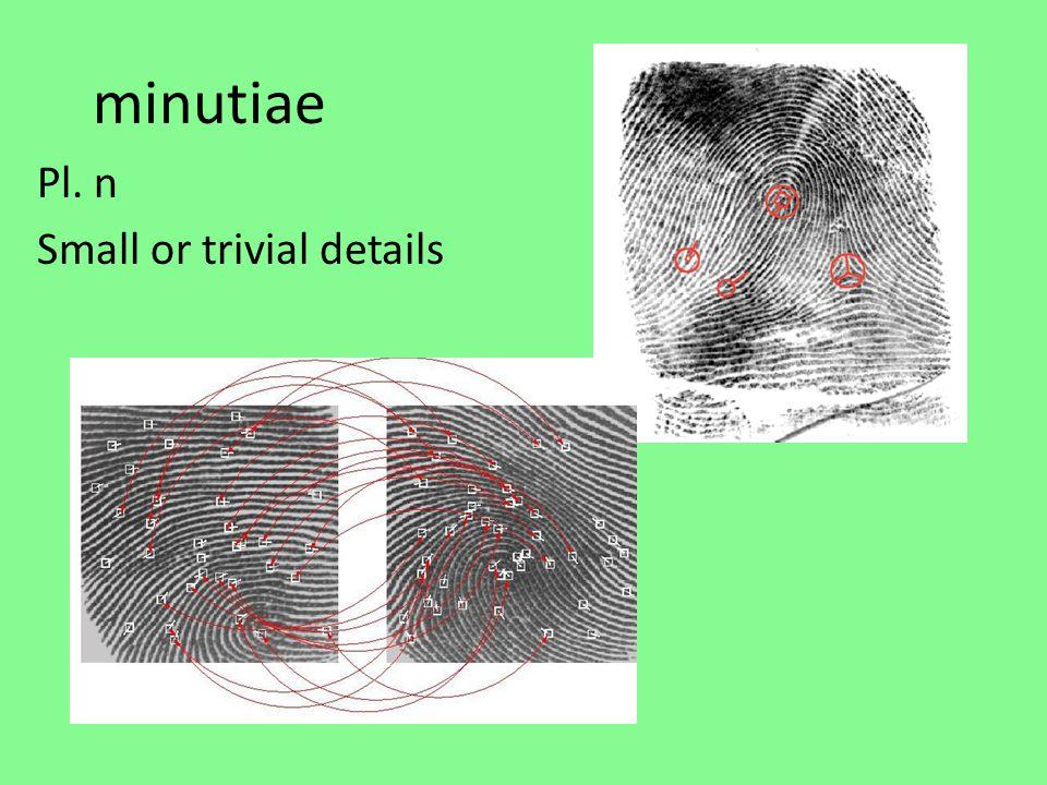 minutiae Pl. n Small or trivial details