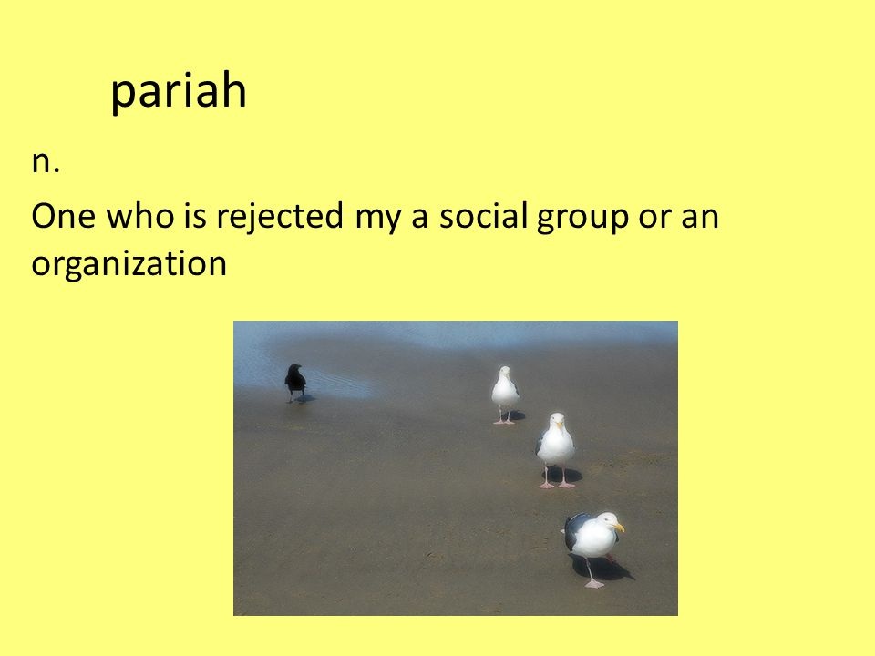 pariah n. One who is rejected my a social group or an organization