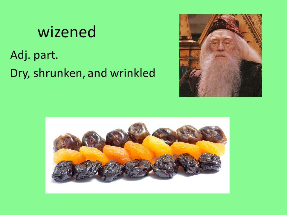 wizened Adj. part. Dry, shrunken, and wrinkled